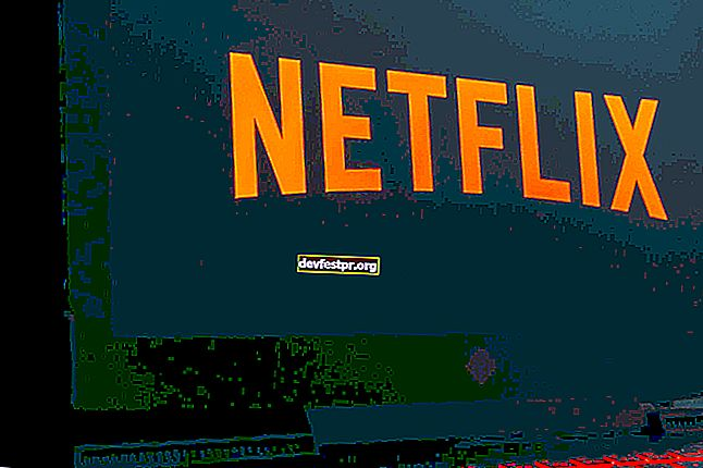 Netflix-App kann unter Windows 10 nicht heruntergeladen werden: Wie kann ich das Problem beheben?